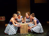 Meisjes met de wijsjes Stefan Pelgrom 11